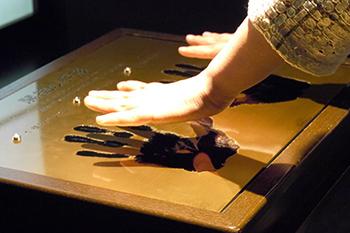 庭野開祖の手形